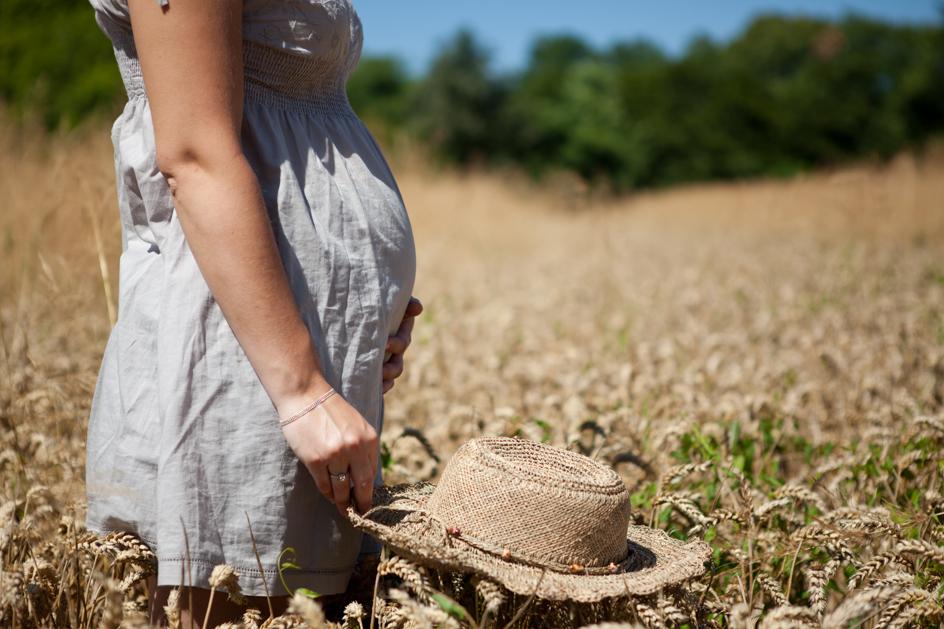 Séance Future maman champ de blé Vinay